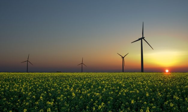 UK Energy for the Future: What Policy for a Secure and Efficient Supply?